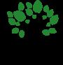 REFORESTIS – Investieren Sie in den Wald der Zukunft.